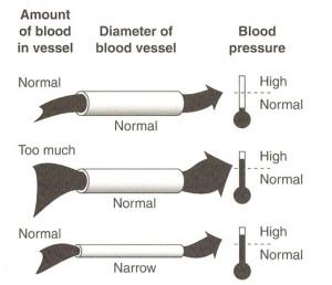 blood pressure 300dpi jpg