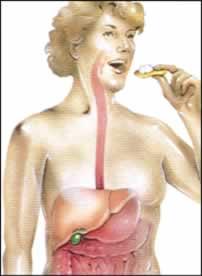 gall_bladder