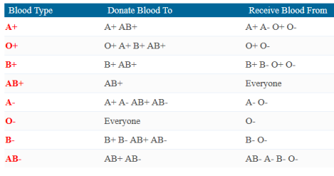 blood-donor-match